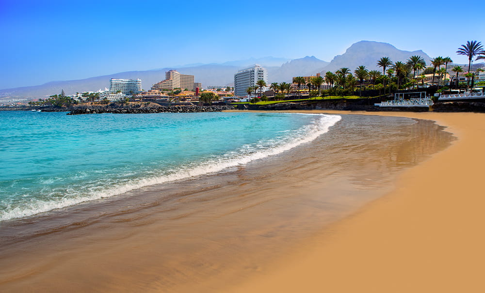 RELAX IN TENERIFE. Time to get your bags packed.. Book now